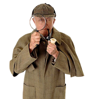Internal Auditor - Sherlock Holmes (300 x 322) - No Background